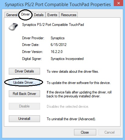 Software Drivers
