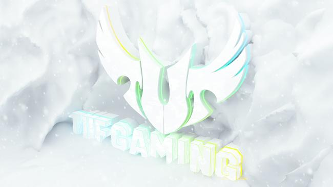 Click image for larger version.  Name:ASUS TUF GAMING SNOW.jpg Views:0 Size:258.1 KB ID:79689